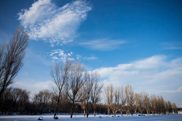 男性が冬に抱える体の悩み