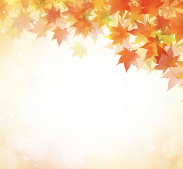 秋バテって?😳