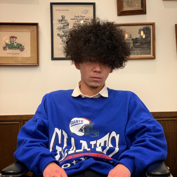 【The Afro Hair】